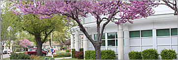 Spring-time photo of The North end of Shears Technology Center